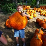 pumpkin-big enough dad