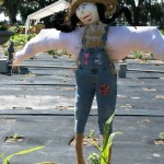 scarecrow3