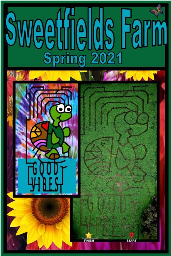 2021 Spring Sunflower Maze